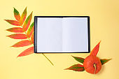 Pumpkin, dried leaves and open notebook on yellow background.