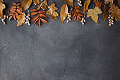 Autumn background with dried fall leaves border