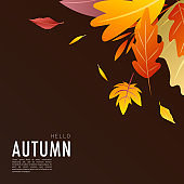 Autumn  background Many leaves change color in the autumn colors , for content online or web, banner and template, Simple cartoon flat style. illustration Vector EPS 10