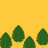 Summer background with palm tree leaves. Vector