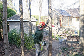 Worker cutting tree trunk with mechanical saw
