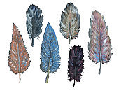 Collection of hand drawn watercolor feathers