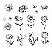 Collection of outline black vector floral elements