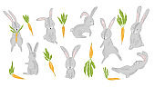 Collection of cute gray rabbits and carrots