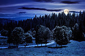 mountainous countryside landscape at night. trees on the meadow along the road