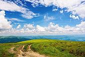 path through grassy mountain meadow