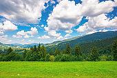 rural landscape in carpathian mountains