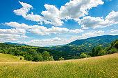 carpathian rural landscape in mountains
