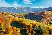 autumnal countryside of carpathian mountains