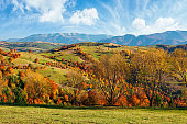 countryside autumn landscape