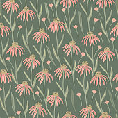 Herbal seamless pattern with wild or meadow  echinacea flowers on green