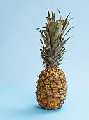 Whole pineapple with leaves on blue background.