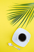 Black coffee in the white cup and palm leaves on the yellow background