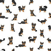 Chihuahua seamless pattern. Dog healthy silhouette and different poses background