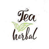 Herbal Tea lettering handwritten sign, Hand drawn grunge calligraphic text. Vector illustration