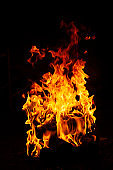 Close-up on a bright flame of a bonfire at night on a black background. Dark mood photo. Concept for outdoor recreation, travel, activity. Vertical format