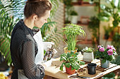 woman in rubber gloves in sunny day watering plant