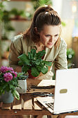 florist in rubber gloves in sunny day using laptop