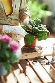 Modern florist in rubber gloves in sunny day do gardening