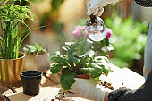 Woman in rubber gloves at home in sunny day watering plant