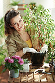 smiling modern florist do gardening at modern home in sunny day