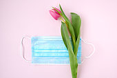 spring flat lay with tulip on pink