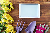 spring flat lay with tablet pc, gardening tools and gloves