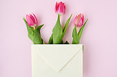 spring flat lay with letter and tulips on pink