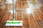 Closeup on mop and wet floor in modern house in sunny day