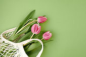 spring flat lay with string bag and tulips isolated on green