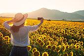 Young Women Making Selfie in Sunflower Field