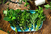 Collection of Fresh Aromatic Herbs on Wooden Table. Overhead View