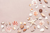 Collection of various seashells on beige craft paper, corner frame. Summer composition. Beach background. Top view, flat lay.