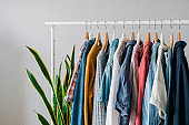 Closet, clothes hanging on hangers, stylish closet selection on a rail in the living room