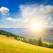Carpathian forest and meadow in summer. Beautiful blazing sunset. Carpathian Mountains, Ukraine