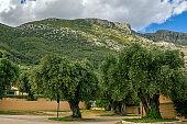Beautiful summer landscape -  Greek village