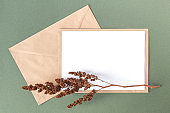 White blank card, craft envelope and dry flowers plant on green background. Top view Flat lay Mockup Copy space