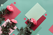 Geometric flat lay with fresh natural peony flowers. Summer birthday or Mother's day decoration arrangement. Top view, geometric split layered paper background in red, pink and burgundy