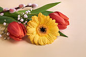 Springtime decorations, spring flowers and quail egg. Orange gerbera daisy, red tulips, pussy willow, primrose and baby's breath flowers on cream background