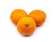 Tangerine citrus fetus on white background
