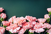 Bouquet of pink carnations.