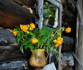 Rustic still life, Summer flowers in old clay jag.