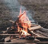 Bonfire Campfire Fire spring Forest