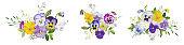 Watercolor pansy flowers bouquet collection. Vector viola spring floral set illustration. Summer bloom violet plant decoration design elements