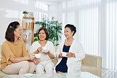 Senior women meeting at home