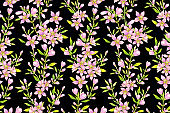 Floral seamless pattern. Spring flowers. Watercolor.