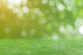 Green grass and blurred bokeh nature background.