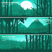 Mountains and forest. Wild nature landscape. Travel and adventure.Panorama. Into the woods. Horizon line.Trees,fog
