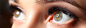 Amazing female green colored eyes with eyelashes extensions