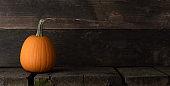 One pumpkin on a wooden background